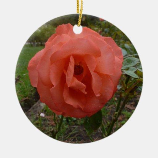 Orange Rose Ornament