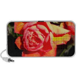 orange rose in the dark ddl mini speaker