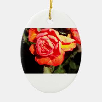 orange rose in the dark ovorn christmas tree ornaments