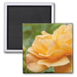 Orange Rose Painterly Square Magnet