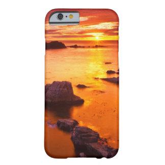 Orange seascape, sunset, California Barely There iPhone 6 Case