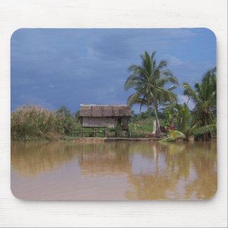Orange Singe Dwelling With In Palm Trees, Sarah Mousepad