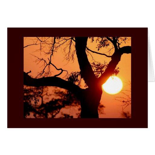Orange Sky Card