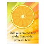 Orange Slice Citrus Fruit Postcard