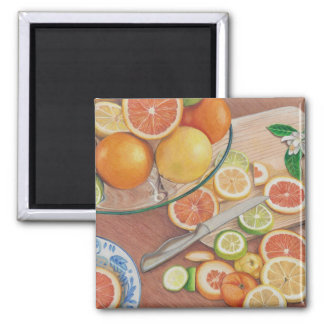 orange slice display coloured pencil drawing print magnet