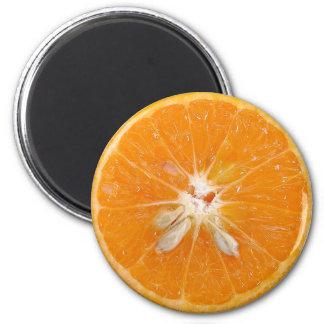 orange slice photo fridge magnet