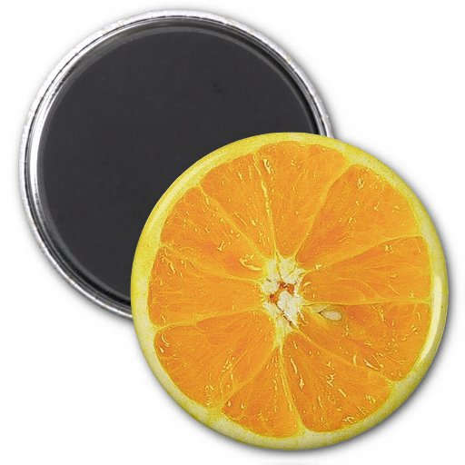 ORANGE SLICE REFRIGERATOR DOOR MAGNET FRIDGE MAGNETS