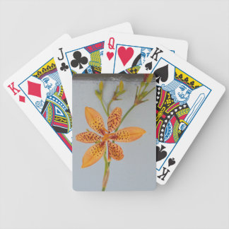 Orange spotted Iris called a  Blackberry lily Bicycle Playing Cards