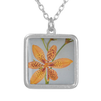 Orange spotted Iris called a  Blackberry lily Silver Plated Necklace