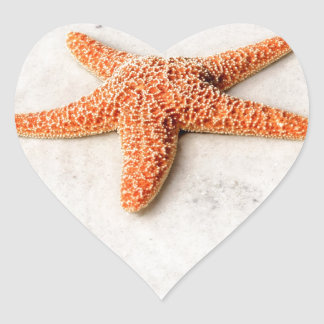 Orange starfish on a white sandy beach heart sticker