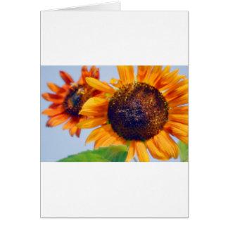 Orange Sunflowers Card