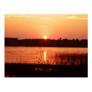 Orange Sunset on the lake Postcard