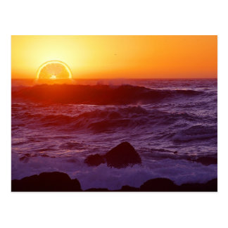 Orange Sunset Post Cards