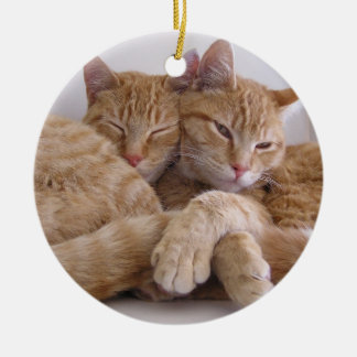Orange Tabby Brothers Round Ceramic Decoration