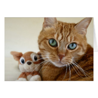 Orange Tabby Cat and His Best Friend Greeting Card