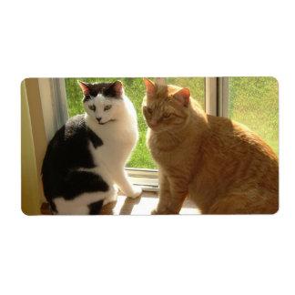 Orange Tabby Cat/Black & White Cat Shipping Label