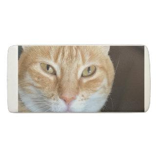 Orange tabby cat eraser