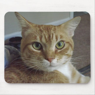 Orange Tabby Cat Mousepad