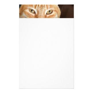 Orange tabby cat personalised stationery