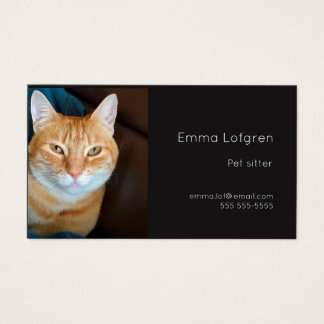 Orange tabby cat pet sitter business card