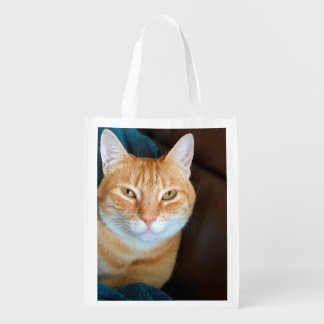 Orange tabby cat reusable grocery bag