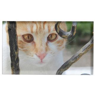 Orange Tabby cat Table Card Holders