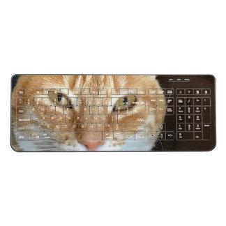 Orange tabby cat wireless keyboard