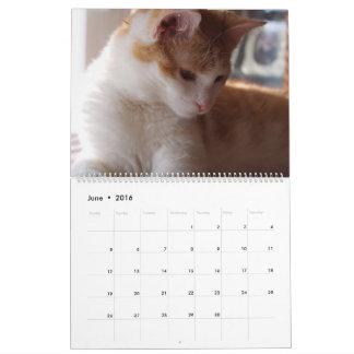 ORANGE TABBY CATS CALENDAR