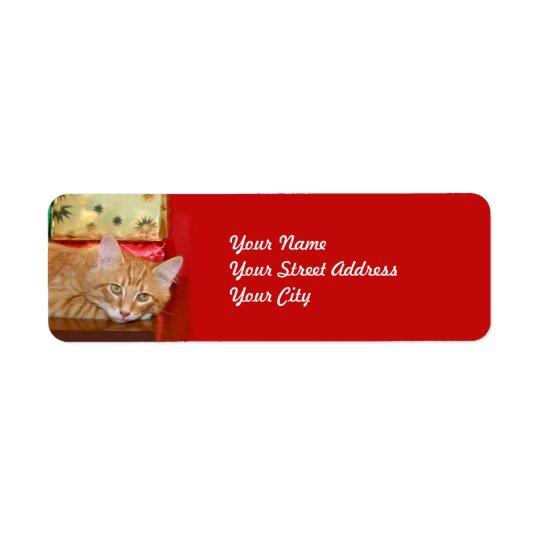 Orange tabby Christmas Return Address Label