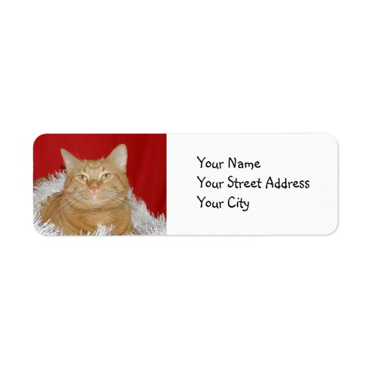 Orange tabby Christmas Return Address Label