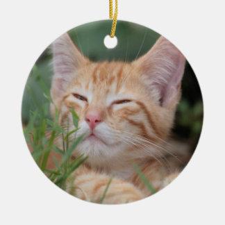 Orange Tabby Kitten ornament