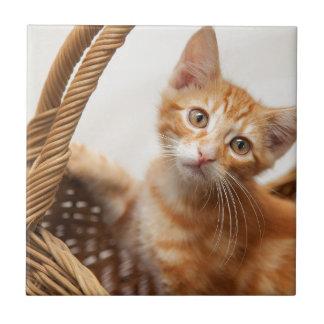 Orange Tabby Kitten Small Square Tile