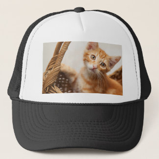 Orange Tabby Kitten Trucker Hat