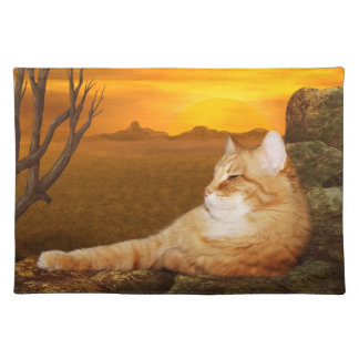 Orange tabby lazes in the sun placemat