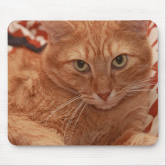 Orange Tabby Mouse Pad