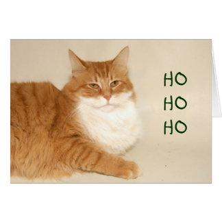 Orange tabby Santa Card