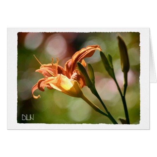 Orange Tiger Lily Flower/Floral  Art Card