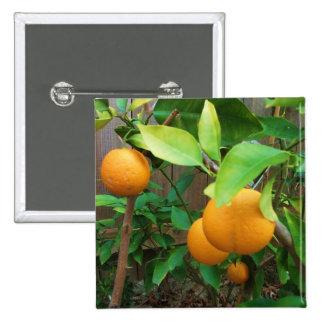 Orange Tree 15 Cm Square Badge