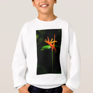 Orange tropical flowers isolated against black bac sweatshirt