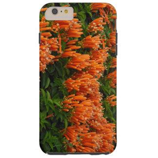 Orange Trumpet Vine Tough iPhone 6 Plus Case