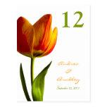 Orange Tulip Table Number Card