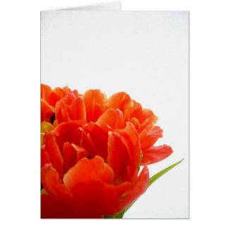 Orange Tulips Note Card