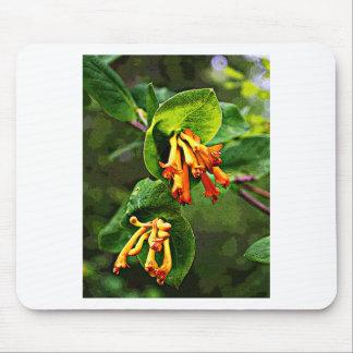 Orange Wildflower artwork Mousepads