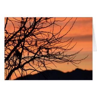 Orange Winter Sky Greeting Card