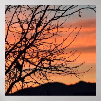 Orange Winter Sky Posters