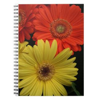Orange & Yellow Gerbera Daisy blooming flowers Spiral Notebook