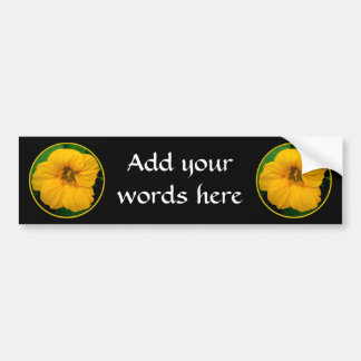 Orange-Yellow Nasturtium Bumper Sticker