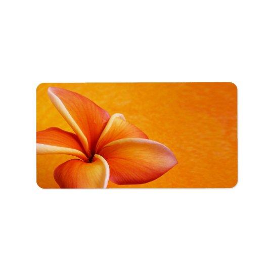 Orange Yellow Plumeria Flower Orange Background Label