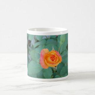 orange yellow rose flower coffee mug