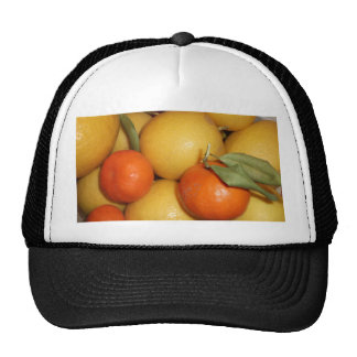 Oranges and Lemons Mesh Hats